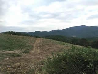 ウィンド・サイト郡山 E20