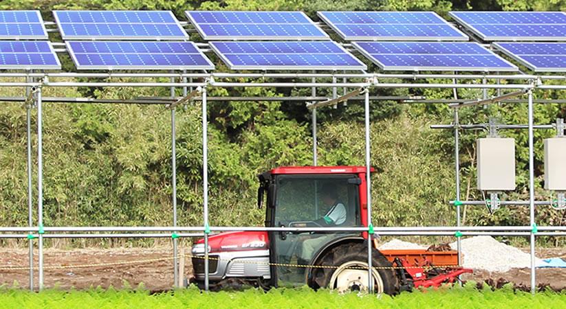 営農型太陽光発電システム導入サポート