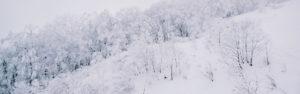 積雪対応フェンス